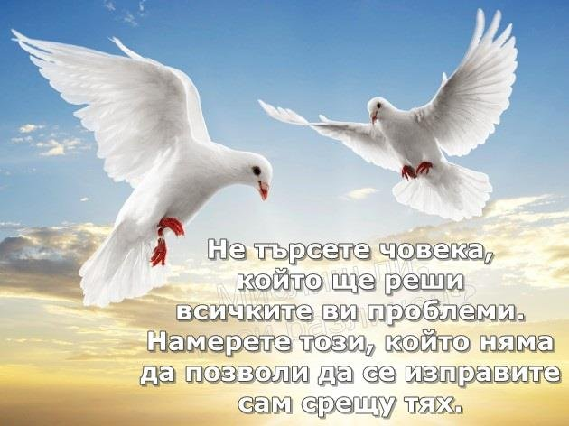 image-09C7_544DE8A9.jpg