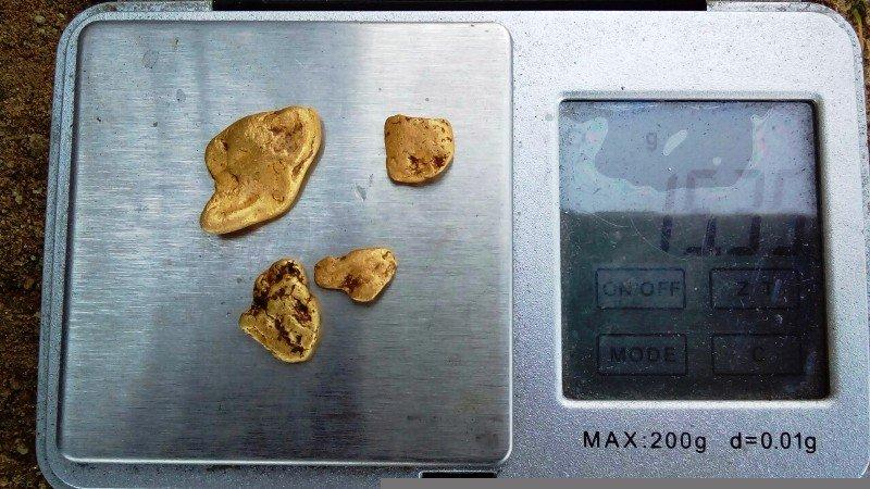 Търсене на злато с металотърсач Image-1F64_564B78D8