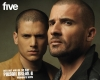Prison Break Wallpapers -